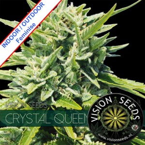 Crystal Queen Feminise