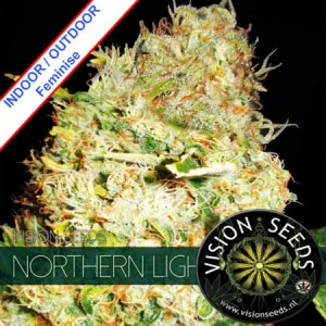 Northern Light Feminise