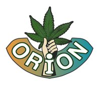 Orion Seeds